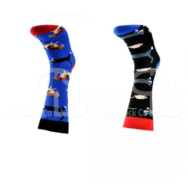 Dogs Cats Mice Themed Socks Odd Sock Co Front View